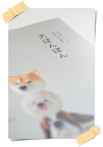 ポンポン犬.JPG
