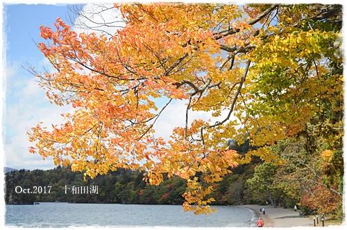十和田湖②.JPG