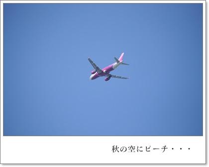 成田・さくらの山.JPG